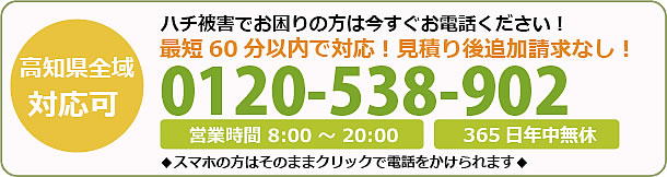 高知県蜂駆除・巣の撤去電話お問い合わせ「0120-538-902」